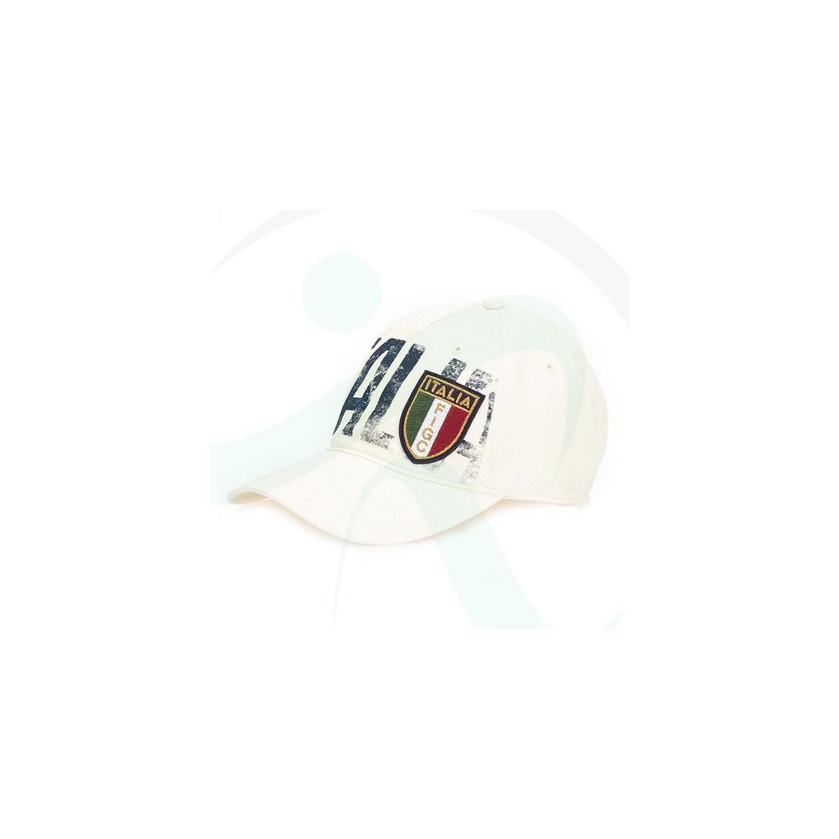 031239c8700 ... ireland puma figc italia azzurri cap 74695307 79bba f63dd