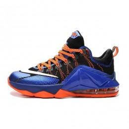 کفش بسکتبال مردانه نایک لبرون Nike Lebron 12 Low 724557-620