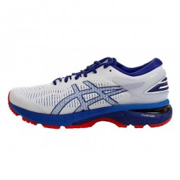 کتانی رانینگ مردانه اسیکس ژل کایانو Asics Gel Kayano 25 1011A019.100