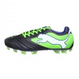 کفش فوتبال پوما پاور کات اس ال Puma Powercat 1 SL FG 102780-01